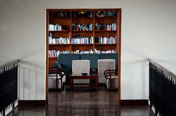 Dining/Living room library