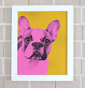 Pop Art Pet Portrait
